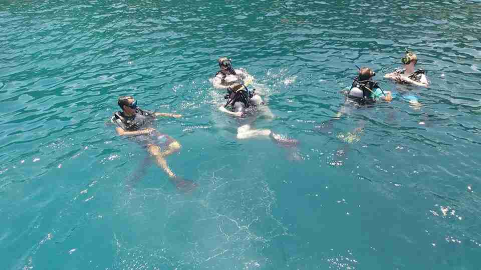 First Dive in Koh Tao