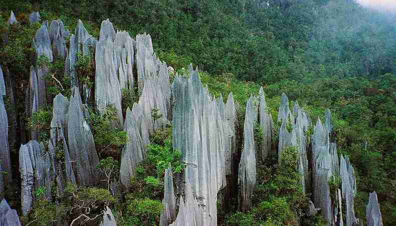 Pinnacles at Mulu Park