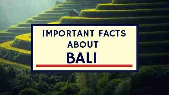Important Facts About Bali
