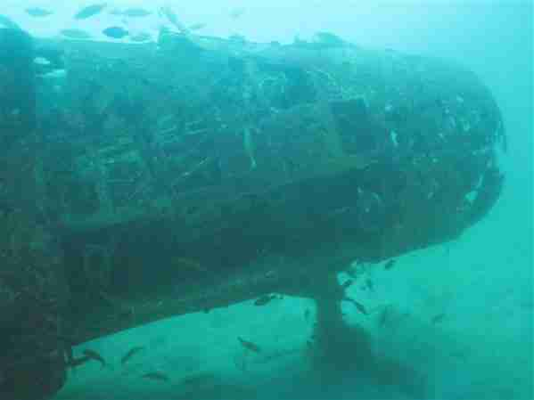 Plane Wreck in Subic Bay