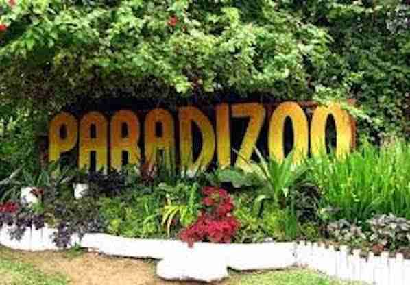 Paradizoo In Tagaytay Philippines