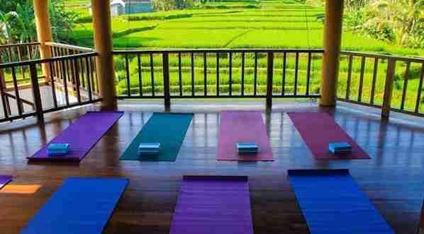 Yoga class Ubud Bali