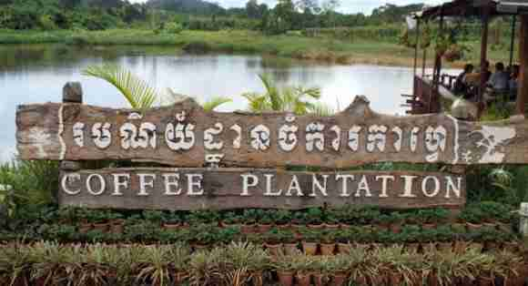 Coffee Plantation Resort in Sen Monorom