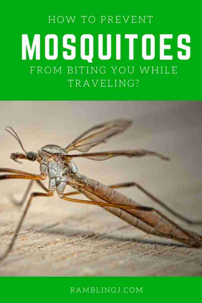 How To Prevent Mosquitoes From Biting You While Traveling?