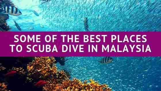 Some of The Best Places To Scuba Dive in Malaysia