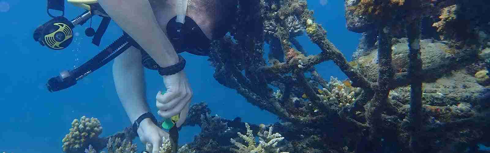 7 Best Places To Dive In Bali