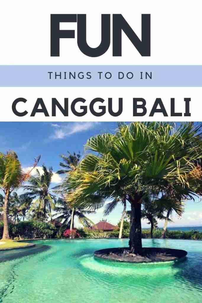 THINGS TO DO iN CANGGU BALI