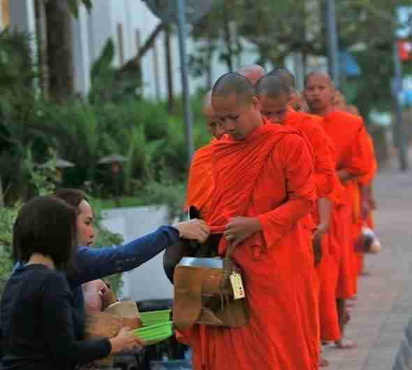 Alms Giving Ceremony in Luang Prabang Laos