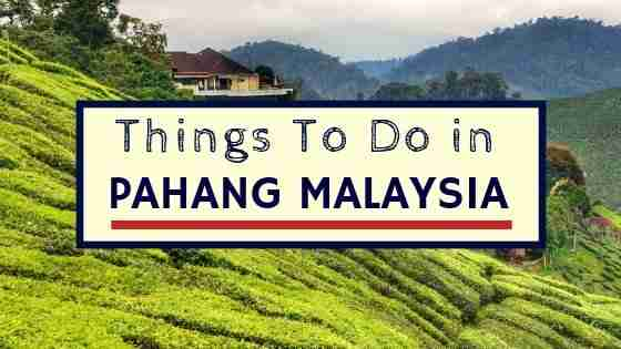 Things To Do In Pahang Malaysia