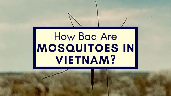 Mosquitoes in Vietnam