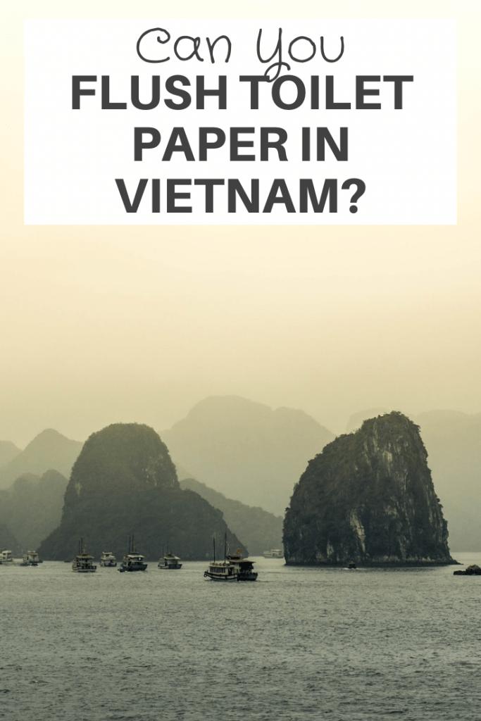Flush Toilet Paper in Vietnam