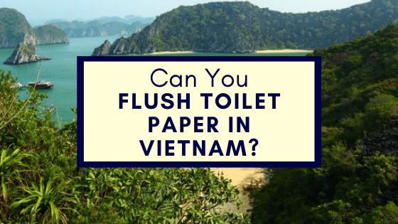 Flush Toilet Paper in Vietnam