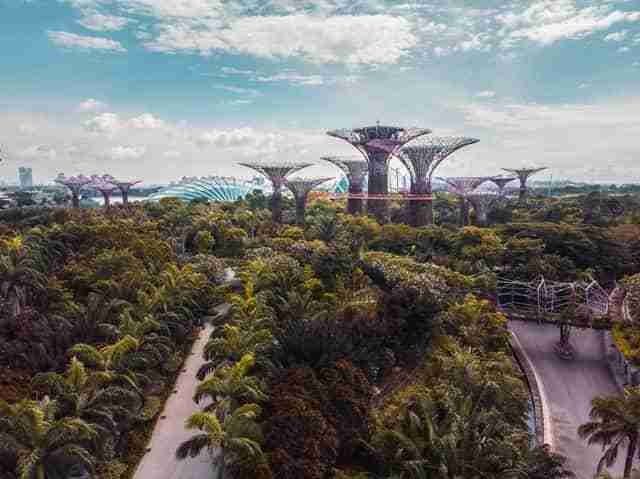 Garden Of The Bay