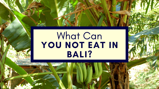 What Can You Not Eat in Bali