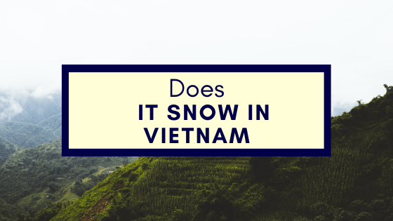 Does It Snow in Vietnam