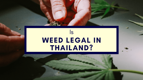 Is Weed Legal In Thailand